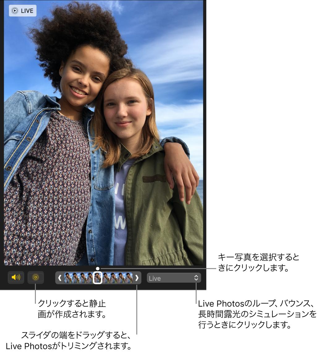 編集ビューのLive Photos。下にスライダがあり、写真のフレームが表示されています。スライダの左には「Live Photos」ボタンと「スピーカー」ボタンがあり、右には、ループ、バウンス、または長時間露光のエフェクトを追加するために使用できるポップアップメニューがあります。