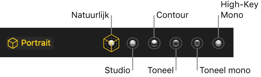 De beschikbare belichtingseffecten voor portretfoto's, met (van links naar rechts) 'Natuurlijk', 'Studio', 'Contour', 'Toneel', 'Toneel mono' en 'High-key mono'.