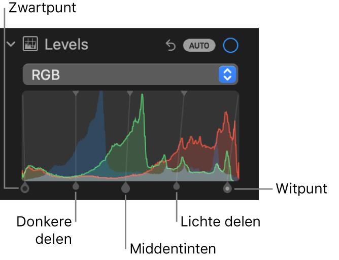 De niveauregelaars in het paneel 'Pas aan', met het RGB-histogram en daaronder grepen met (van links naar rechts) zwartpunt, donkere delen, middentinten, lichte delen en witpunt.