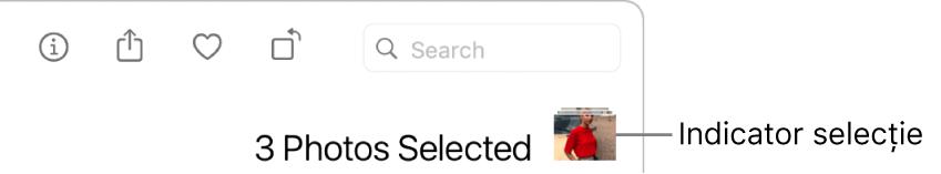 Indicator de selecție indicând trei poze selectate.