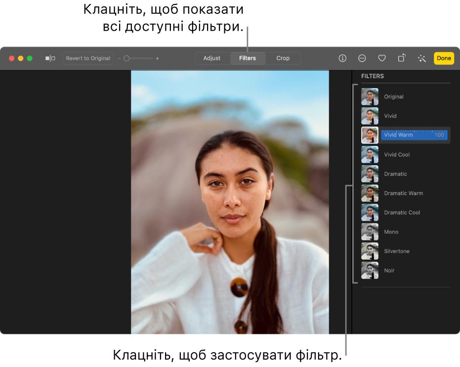 Фото в режимі редагування, на панелі інструментів вибрано «Фільтри», справа опції фільтрів.
