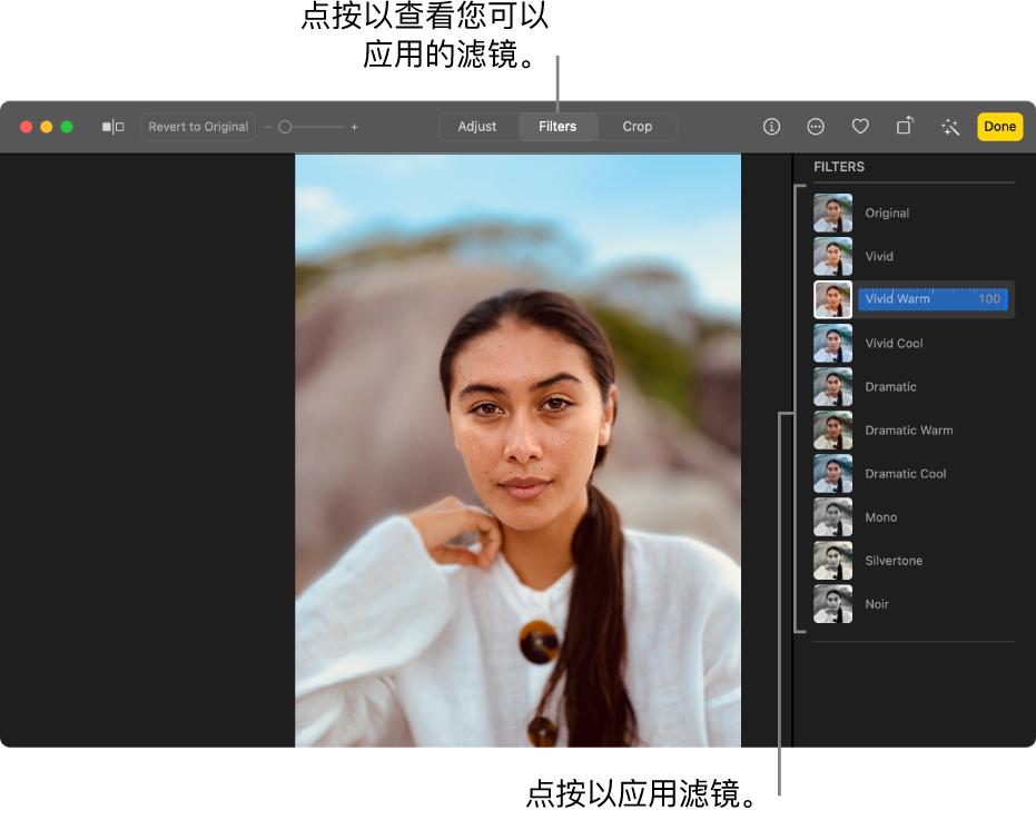 """编辑视图中的照片,其中已选择工具栏中的""""滤镜"""",右侧显示滤镜选项。"""