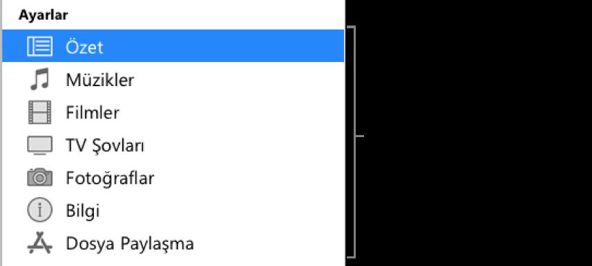 Soldaki kenar çubuğunda seçili olan Özet öğesi. Görünen içerik türleri, aygıtınıza ve iTunes arşivinizin içeriğine bağlı olarak değişiklik gösterebilir.