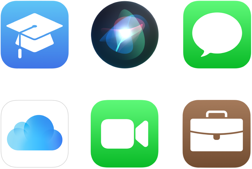 Symbole für sechs Apple-Dienste: Apple School Manager, Siri, iMessage, iCloud, FaceTime und Apple Business Manager