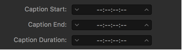Caption timing fields showing dashes instead of timecode