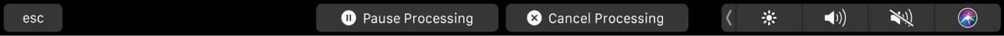 Conjunto de botones de la pestaña Activo