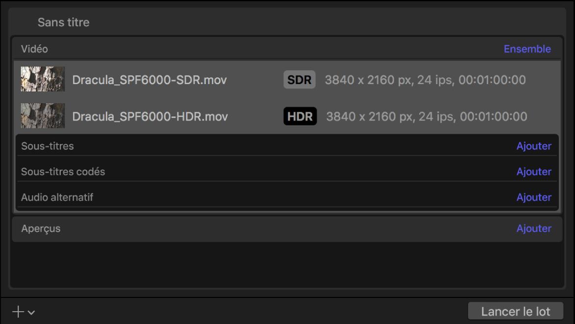 Zone du lot affichant les informations de sortie pour de la vidéo SDR et de la vidéo HDR.