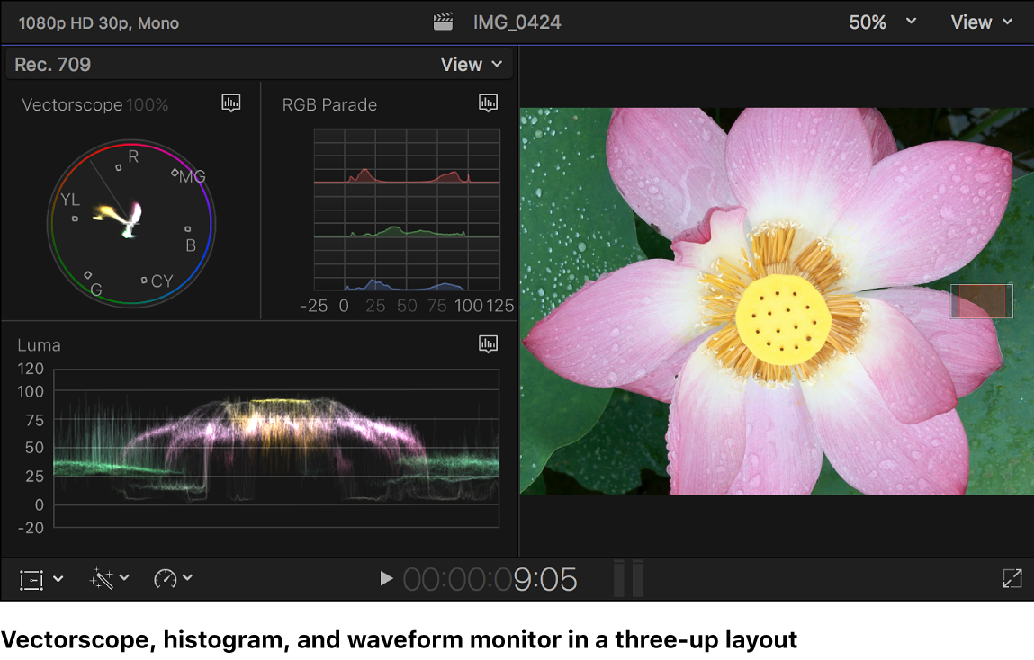 """Das Vectorscope, das Histogramm """"RGB-Parade"""" und der Waveform-Monitor """"Luma"""" links neben dem Viewer"""