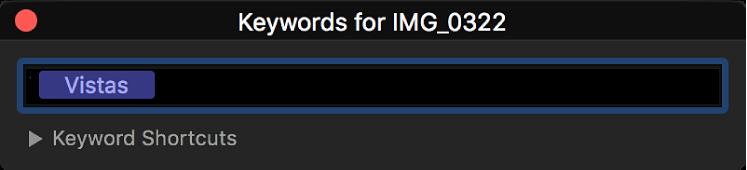Der Schlagwort-Editor mit Schlagwörtern, die dem ausgewählten Clip zugewiesen sind