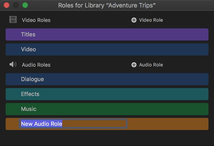 Neu erstellte Audiorolle im Rolleneditor