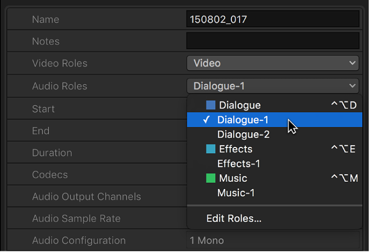 Options in the Audio Roles pop-up menu in the Info inspector