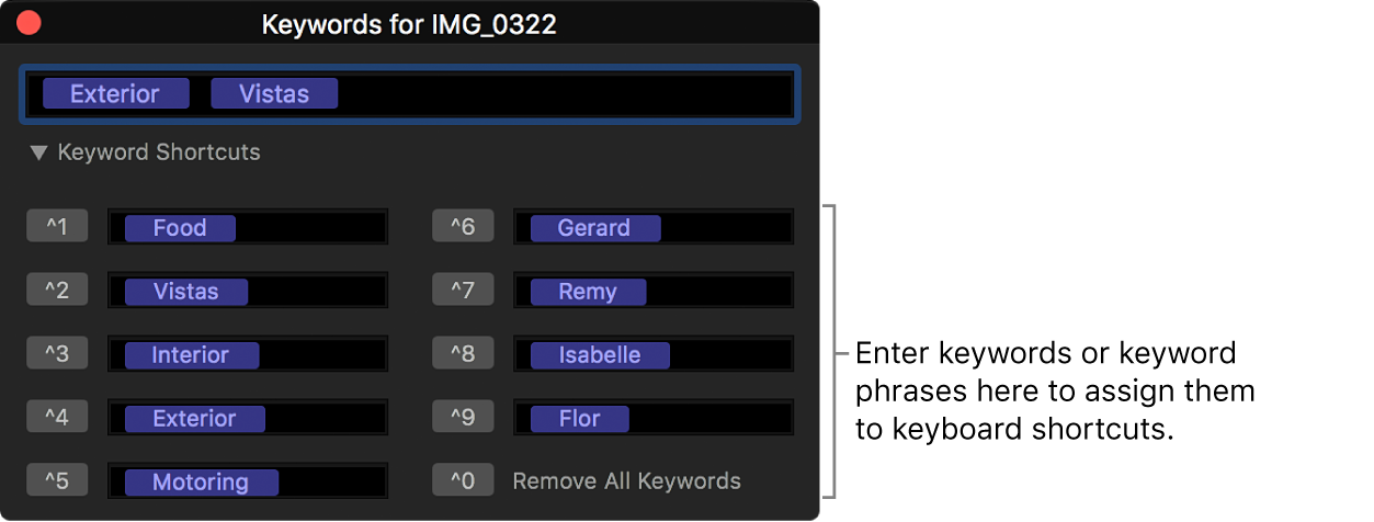 The keyword editor showing keyword shortcut fields