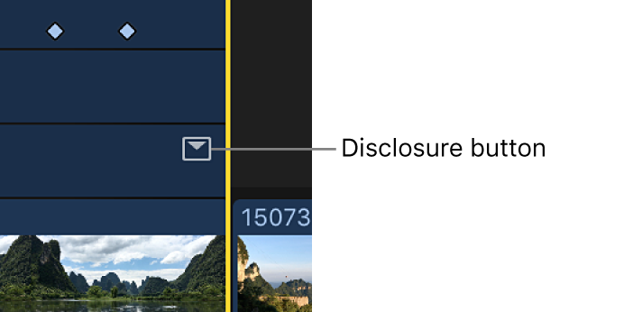 The disclosure button for an effect in the Video Animation editor