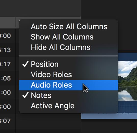 Menu contextuel permettant de personnaliser l'affichage des colonnes dans l'index de la timeline