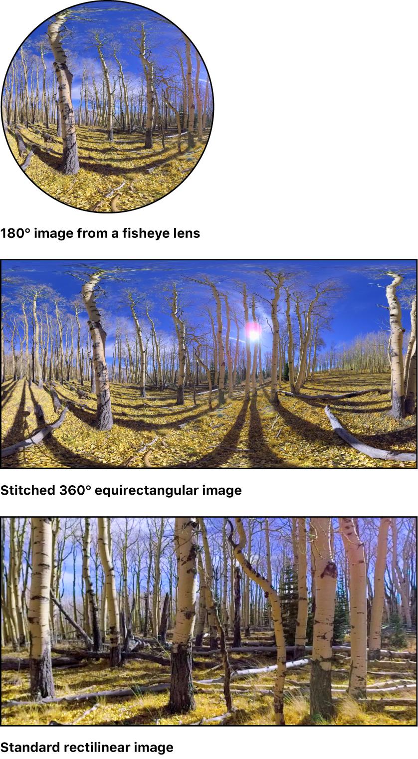 1つの魚眼イメージ、ステッチされた360°イメージ、および標準の球面収差補正イメージ
