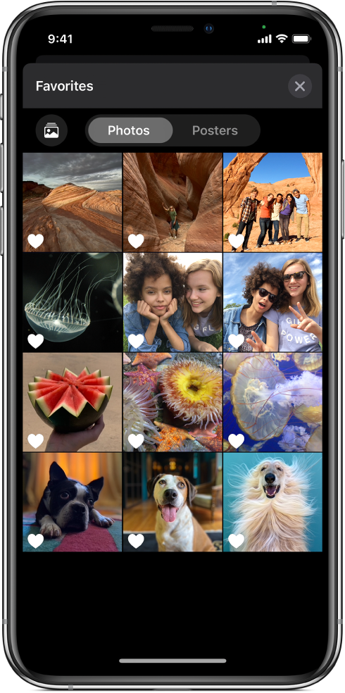 The Photos browser showing thumbnails of photos.