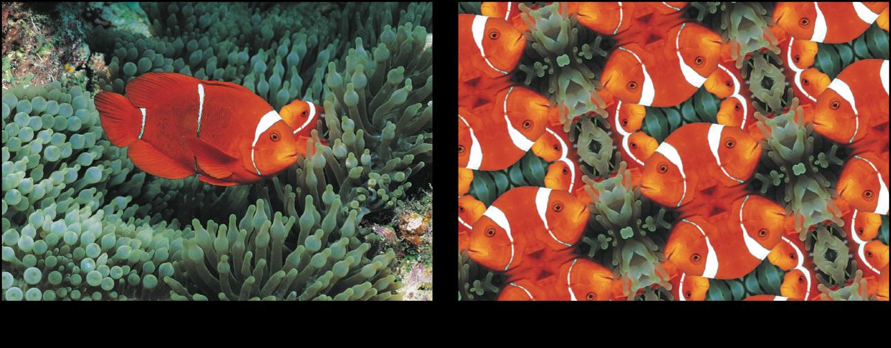 "Canvas mit dem Effekt des Filters ""Kachel-Kaleidoskop"""