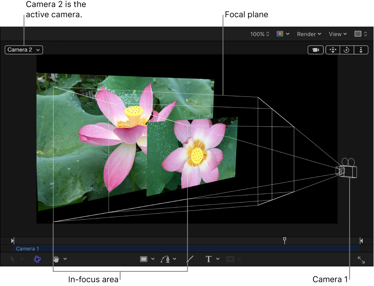 Canvas showing camera's focal plane and in-focus area