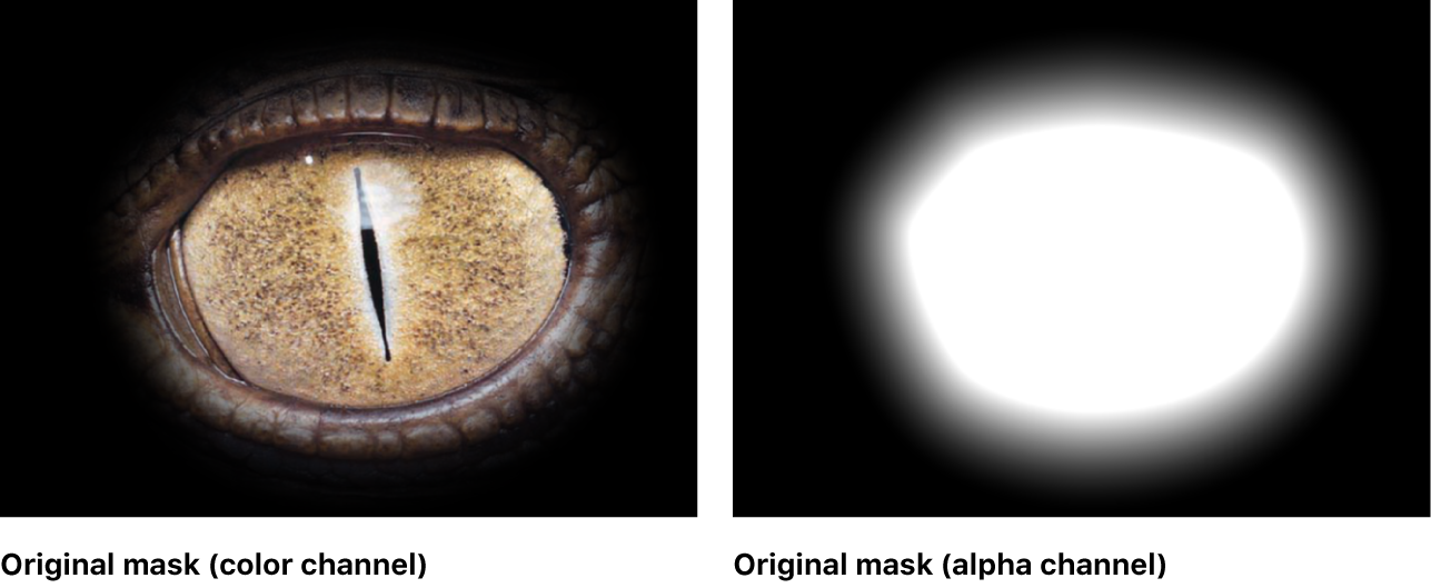Canvas showing mask with no filters applied