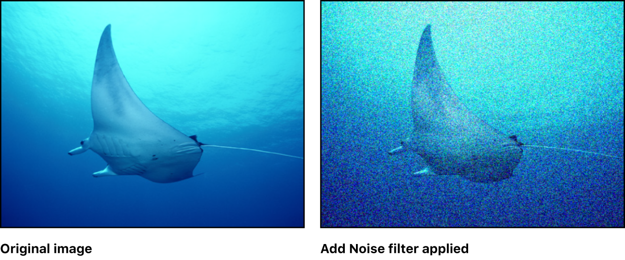 Canvas showing effect of Add Noise filter