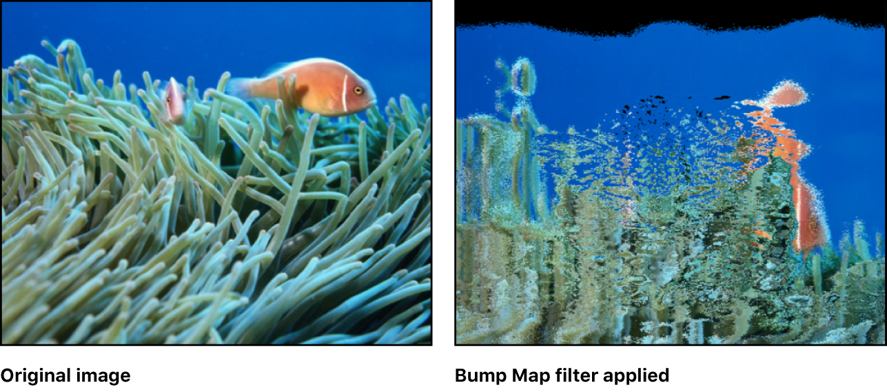 Canvas showing effect of Bump Map filter