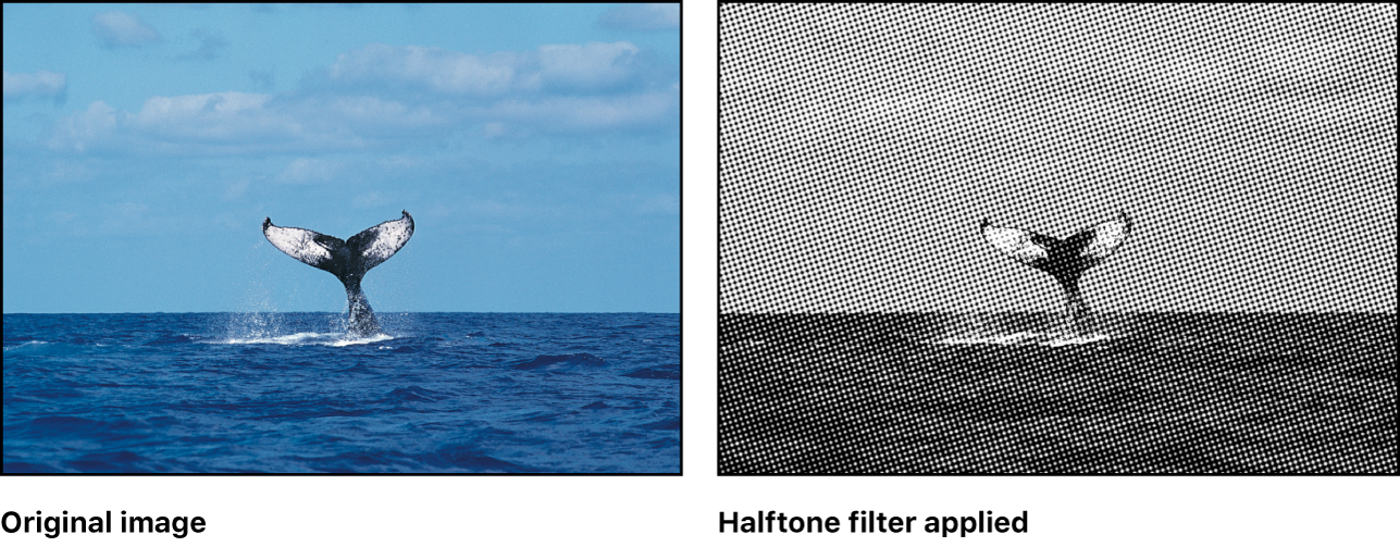 Canvas showing effect of Halftone filter