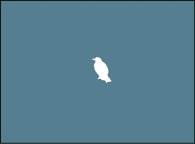 Canvas showing background image and white bird shape