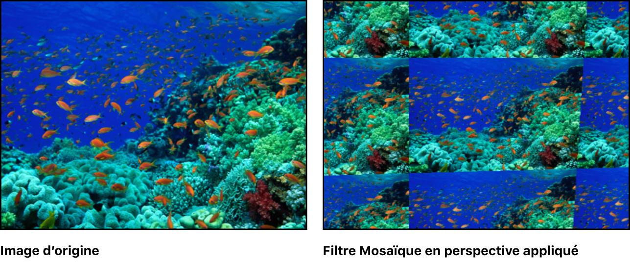 Canevas affichant l'effet du filtre Mosaïque en perspective