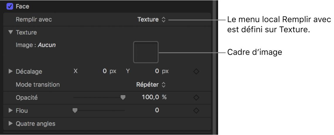 Inspecteur de texte avec paramètre «Remplir avec» du style de texte réglé sur Texture, révélant le cadre d'image