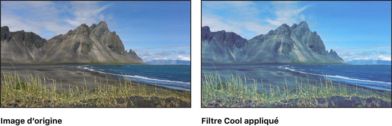 Canevas affichant l'effet du filtre Cool
