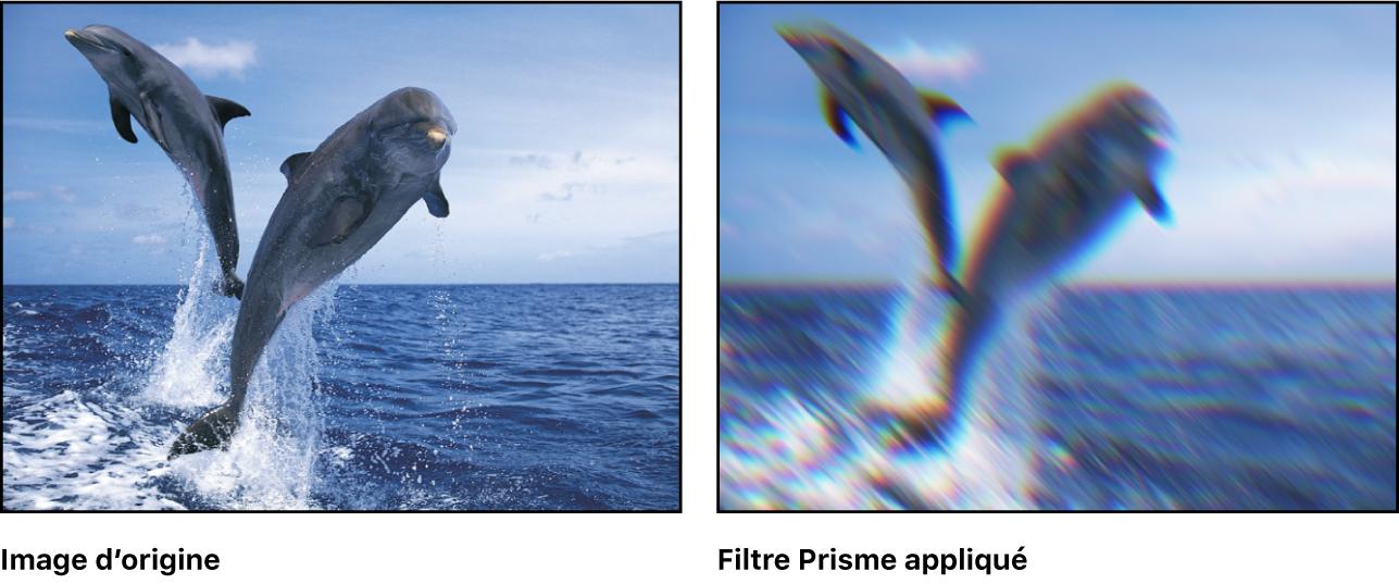 Canevas affichant l'effet du filtre Prisme