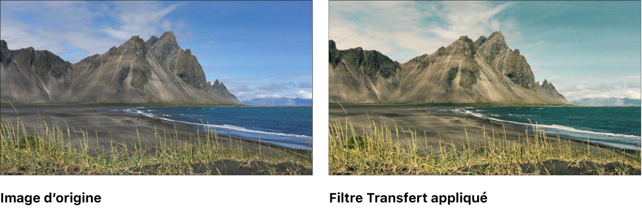 Canevas affichant l'effet du filtre Transfert