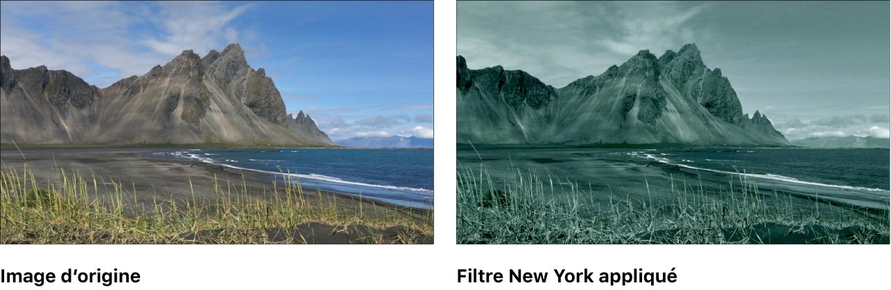 Canevas affichant l'effet du filtre New York