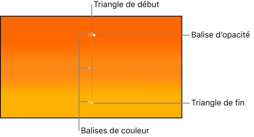 Commandes à l'écran de dégradé affichant un triangle de départ, une balise de couleur, une balise d'opacité et un triangle d'arrivée
