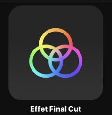 Icône d'effet FinalCut dans le navigateur de projets