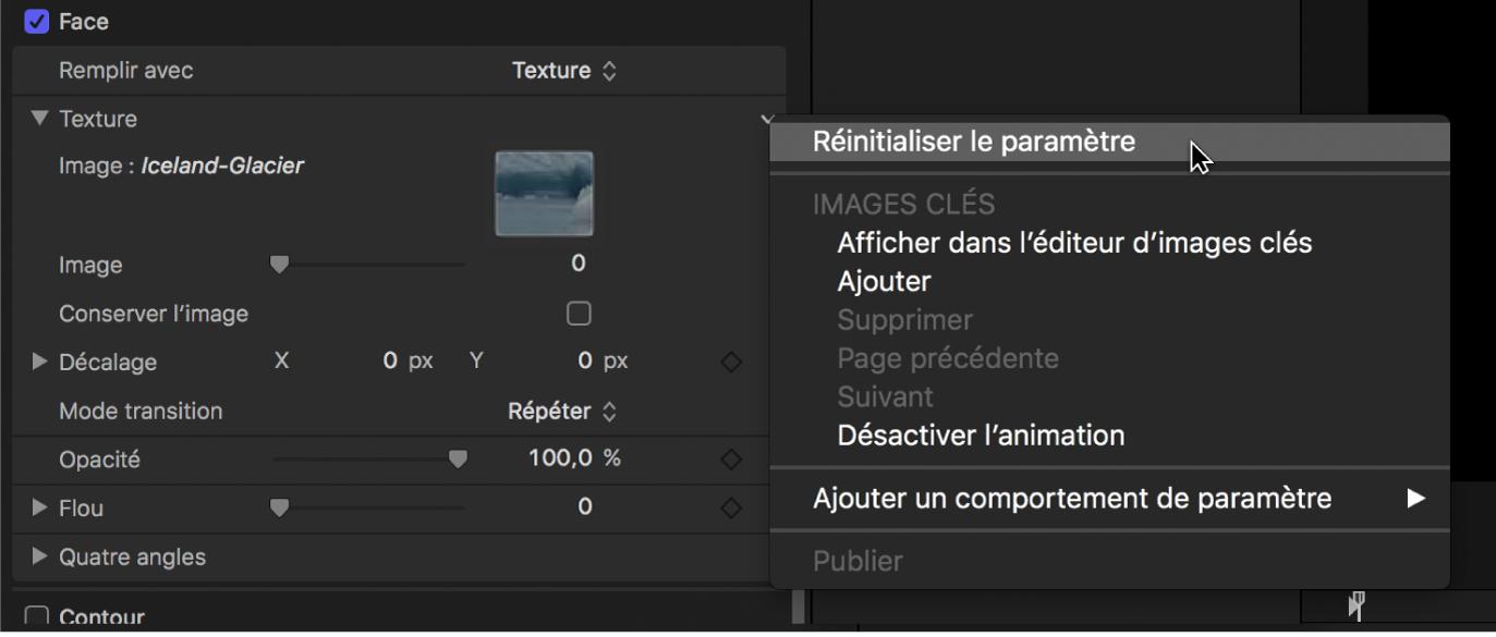 Inspecteur de texte affichant le bouton de réinitialisation du paramètre Texture