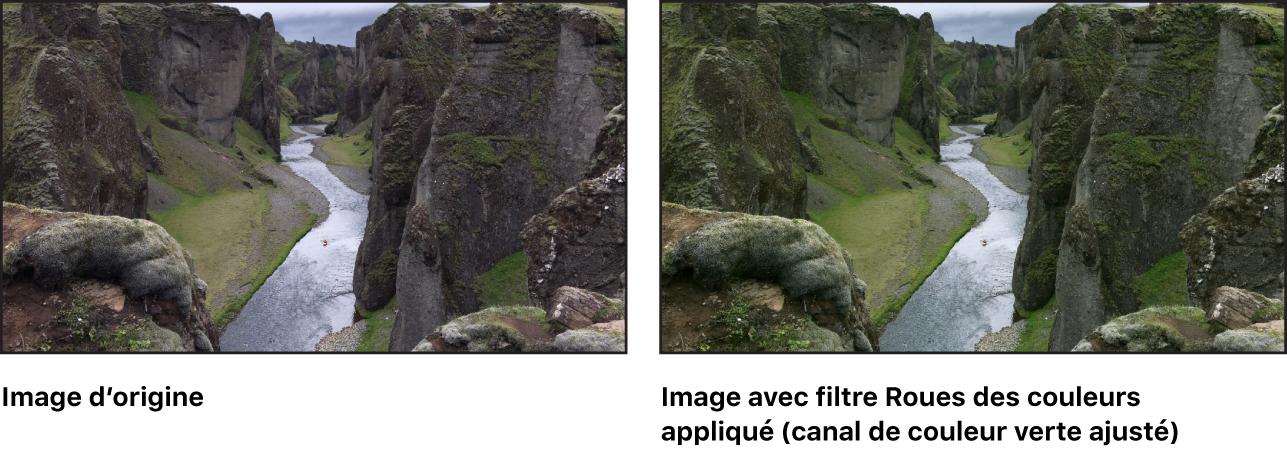 Canevas affichant l'effet du filtre Roues des couleurs (avec le canal du vert des tons intermédiaires ajusté)