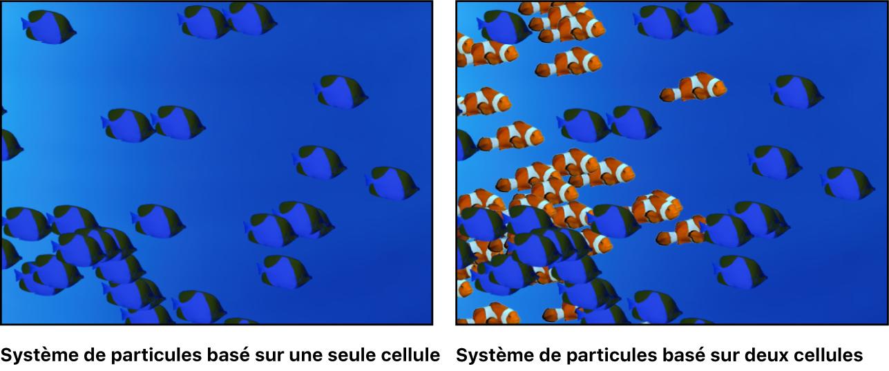Canevas affichant un système de particules s'appuyant sur une seule cellule, et un autre s'appuyant sur deux cellules