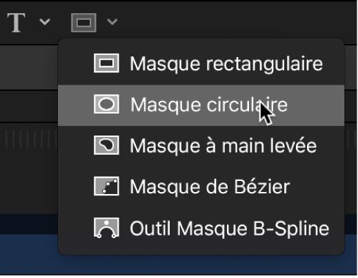 Sélection de l'outil Masque circulaire dans les outils de forme de masque de la barre d'outils du canevas