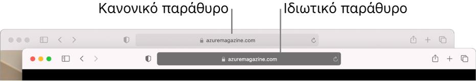 Ένα κανονικό παράθυρο Safari με το ανοιχτόχρωμο Έξυπνο πεδίο αναζήτησης και ένα ιδιωτικό παράθυρο Safari με το σκούρο Έξυπνο πεδίο αναζήτησης.
