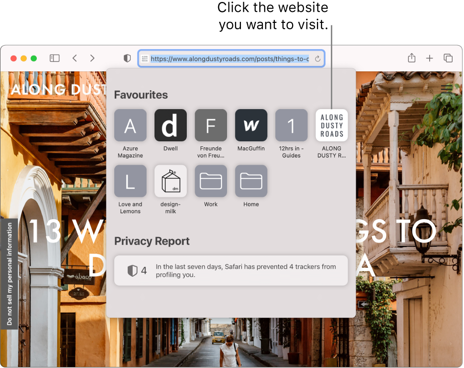 The Safari Smart Search field; below it is the start page showing Favourites and a Privacy Report summary.
