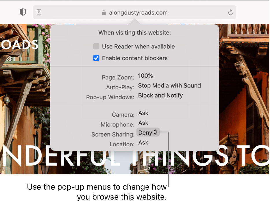 The dialog that appears below the Smart Search field when you choose Safari > Settings for This Website. The dialog contains choices for customising how you browse the current website, including using Reader view, enabling content blockers, and more.