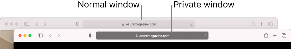 A normal Safari window with its light Smart Search field, and a private Safari window with its dark Smart Search field.