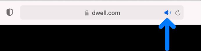 右側に「オーディオ」ボタンが表示されたスマート検索フィールド。