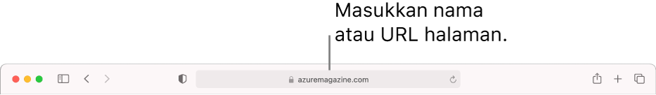 Medan Carian Pintar Safari, tempat anda boleh memasukkan nama halaman atau URL.