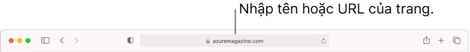 Trường Tìm kiếm thông minh của Safari, nơi bạn có thể nhập tên hoặc URL của trang.