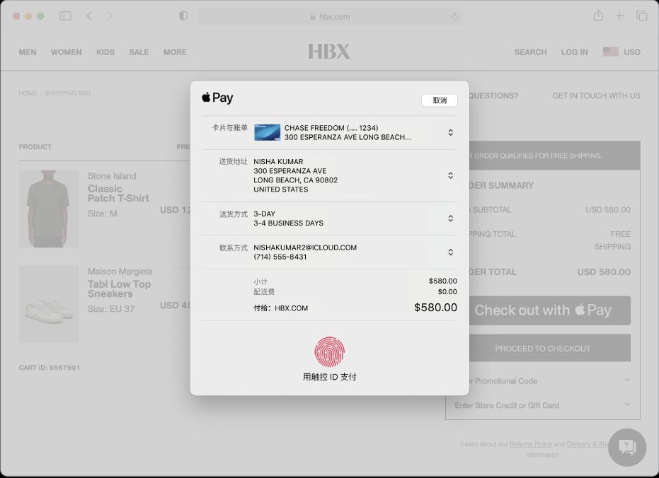 允许 Apple Pay 的流行购物网站,以及购物的详细信息,其中包括记账的信用卡、送货信息、商店信息和购物价格。