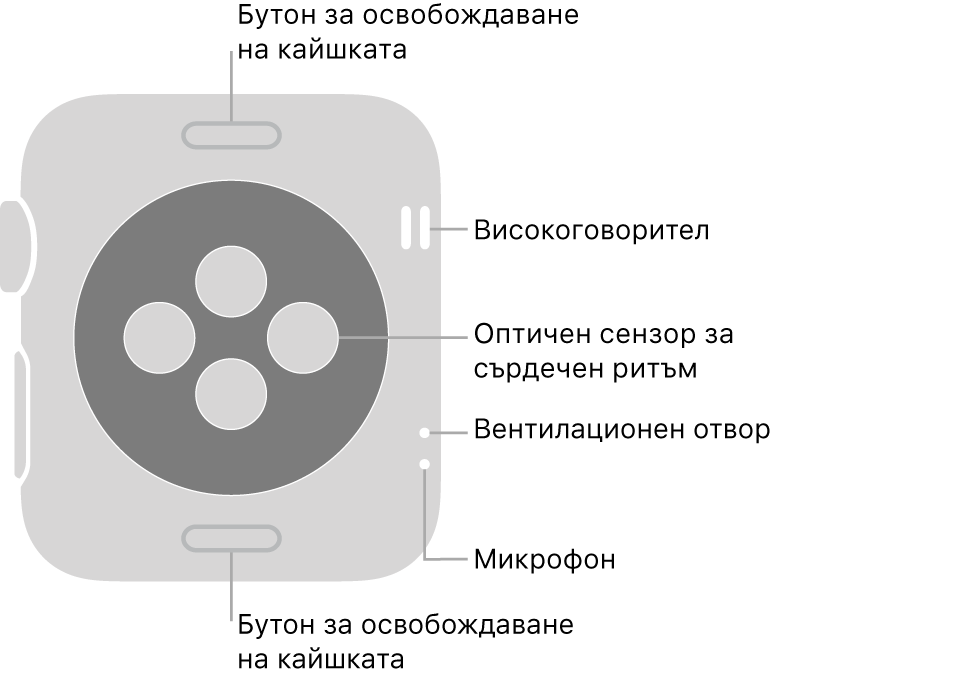 Задната страна на Apple Watch Series 3 с бутоните за освобождаване на каишката горе и долу, оптическите сензори за сърдечен ритъм в средата и от горе надолу, встрани - говорителя, въздушната клапа и микрофона.