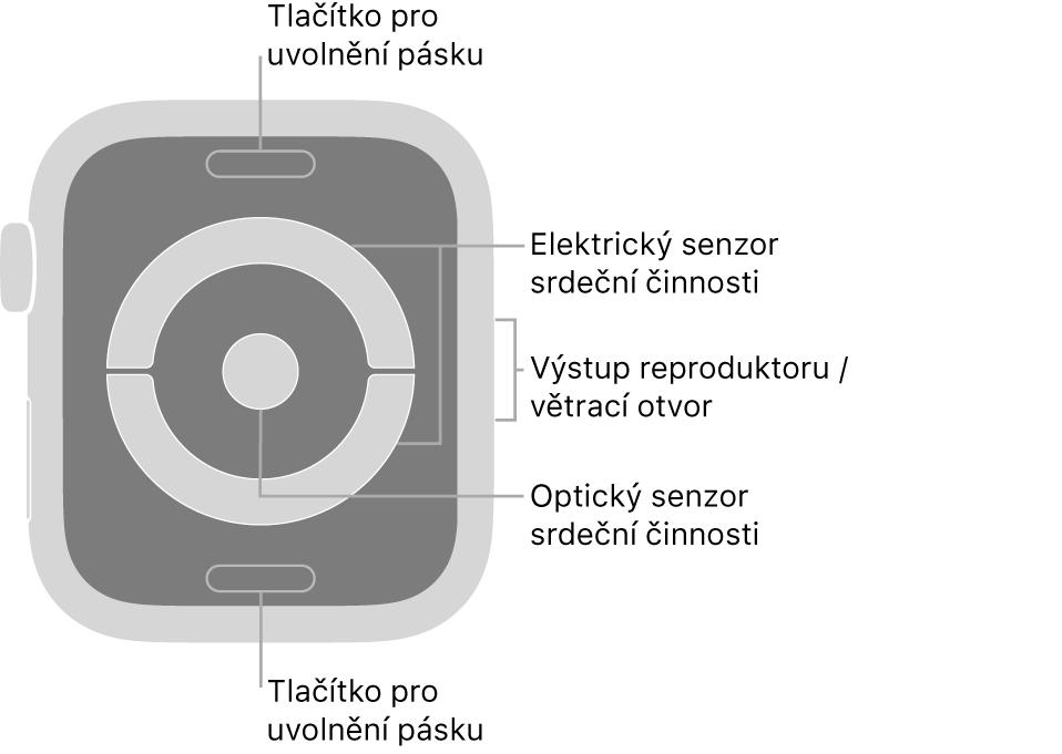Zadní strana hodinek AppleWatch Series4 aAppleWatch Series5: nahoře adole jsou tlačítka pro uvolnění řemínku, uprostřed elektrická čidla srdeční činnosti aoptická čidla srdeční činnosti ana boku je reproduktor avětrací otvor.
