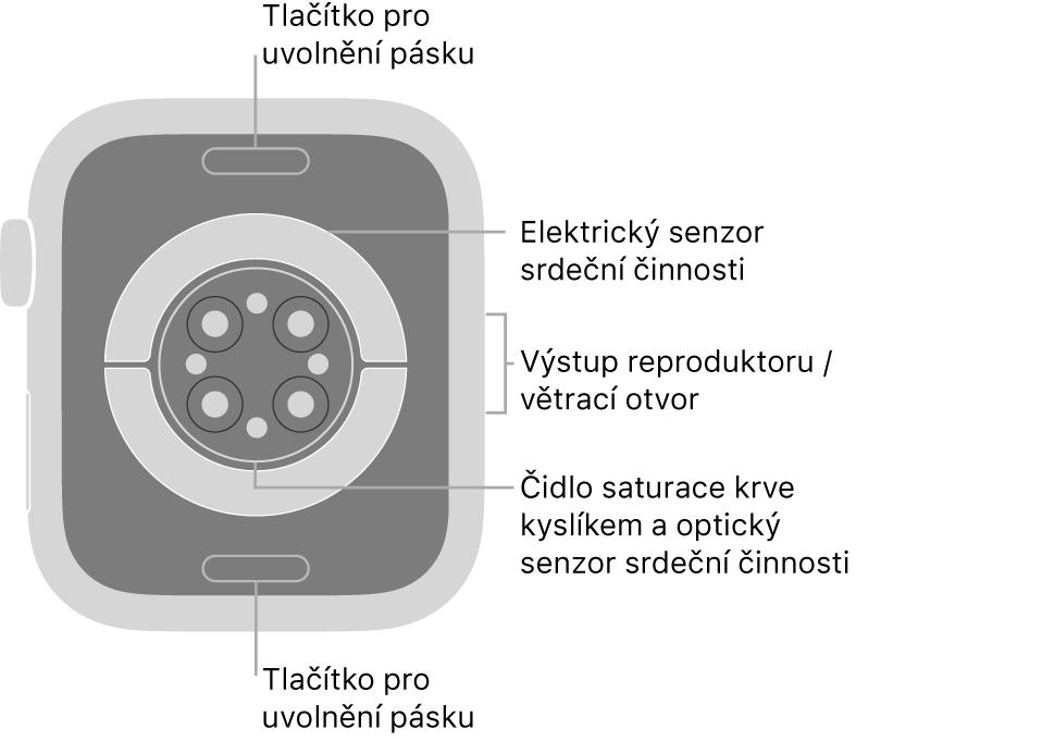 Zadní strana hodinek AppleWatch Series6: nahoře adole jsou tlačítka pro uvolnění řemínku, uprostřed elektrická čidla srdeční činnosti, optická čidla srdeční činnosti ačidla pro měření hladiny kyslíku vkrvi ana boku je reproduktor avětrací otvor.